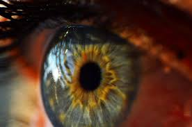 People With Cornea Problems Now Have Hope In 3D-Printed Artificial Corneas
