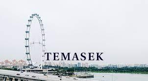 Analysts Expect Singapore's Temasek To Report Record Portfolio Value