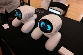A Robot Dog that Dances and Protects - Domgy