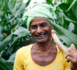 Tata Power's Agricultural Initiative Increases Yields For Indian Farmers
