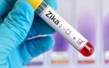 Crisis and Profit Potential Spur Zika Vaccine Race