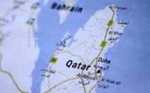 UAE Role In Hack That Sparked Crisis Revealed In Media Report, Qatar Says
