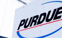 US Opioid Case: Purdue Pharma Files For Bankruptcy In Its Attempt For A Settlement