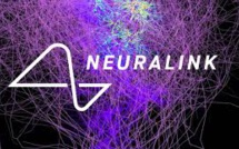 Musk's Firm Neuralink Displays Pigs With Computer Chips In Their Brains