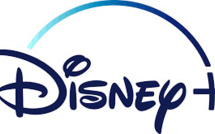 Households Without Children Drives Subscriber Growth Of Disney+, Says CEO