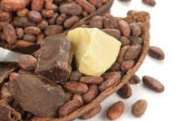Chocolate Traders Not Paying Farmers Living Wage Premium, Alleges Ivory Coast