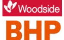 BHP And Woodside's $29 Billion Petroleum Merger Cause Of Worry For Investors