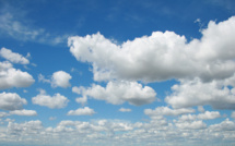 Google's cloud business set to grow significantly this year