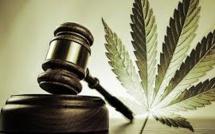 Marijuana Legalization Viewed as a Pot of Gold by California Businessmen